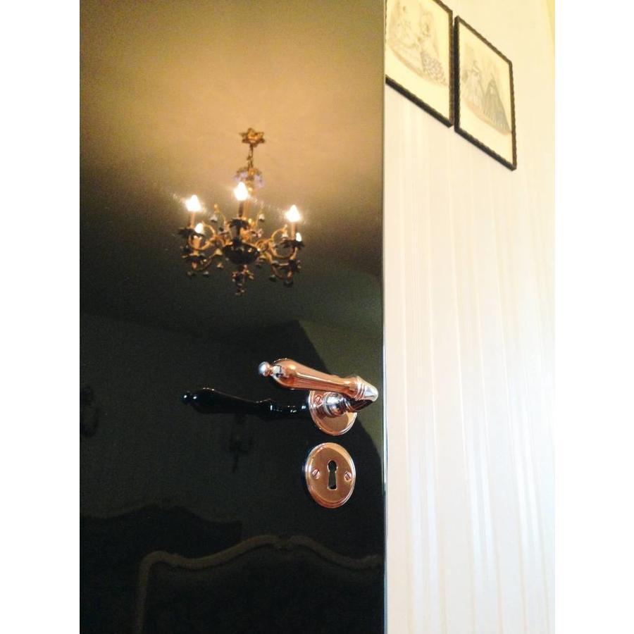 Da Vinci Rosa door handles with profile cylinder plates