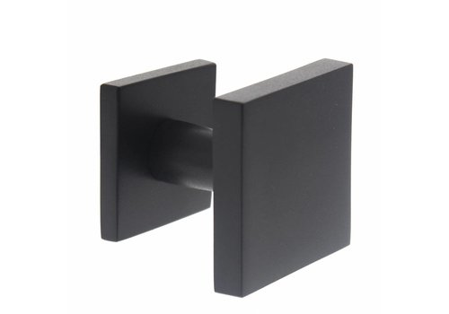 Front door knob fixed central square stainless steel / matt black