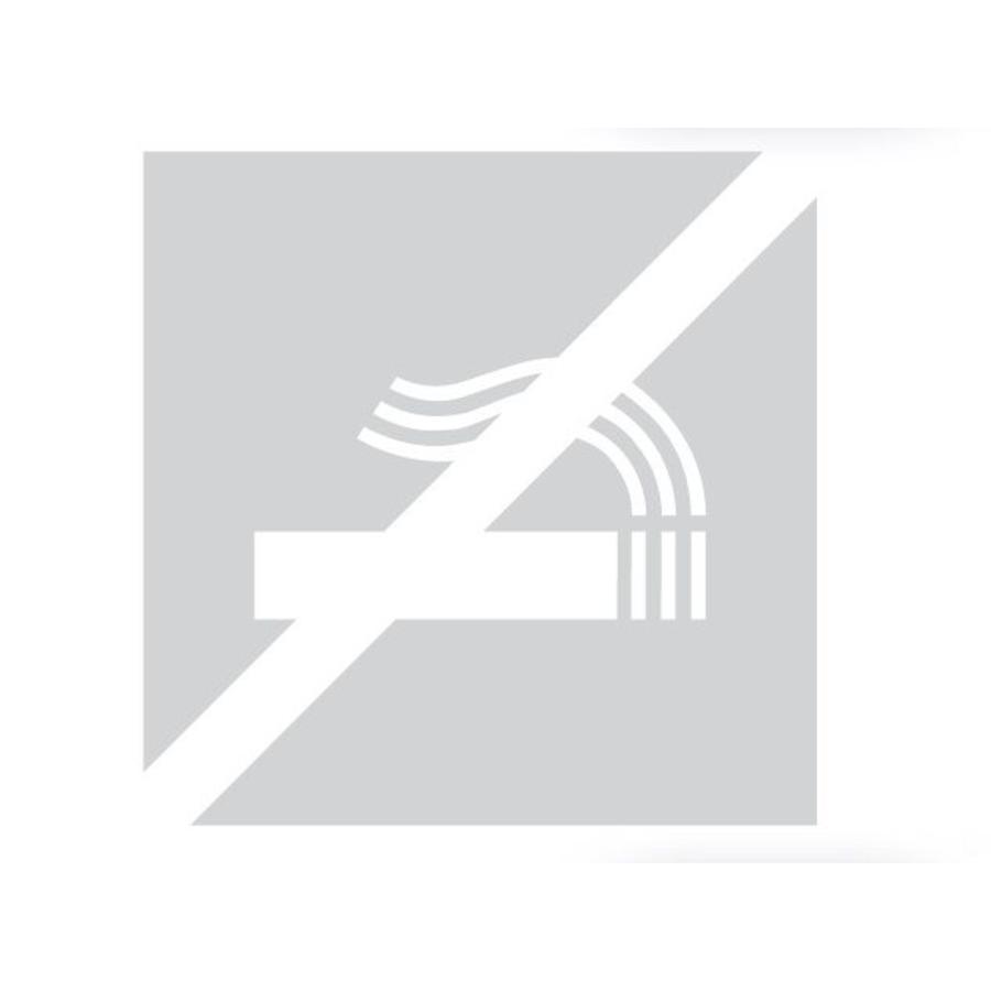 GLAS VIERKANT PICTO ROOKVERBOD 198 MM DIKTE 6 MM