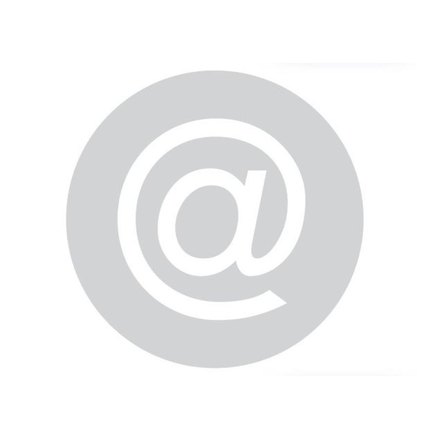 GLAS ROND PICTO BUREEL 298MM DIKTE 6 MM