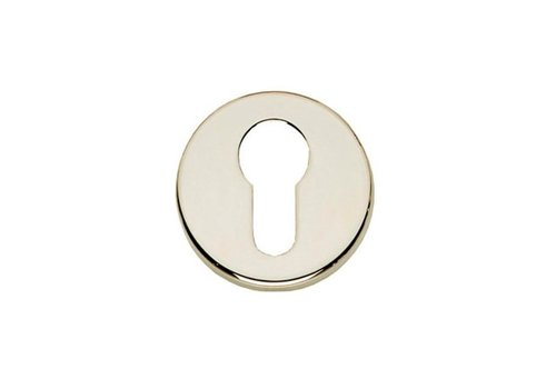 Profile cylinder plate plastic concealed brass nickel plated