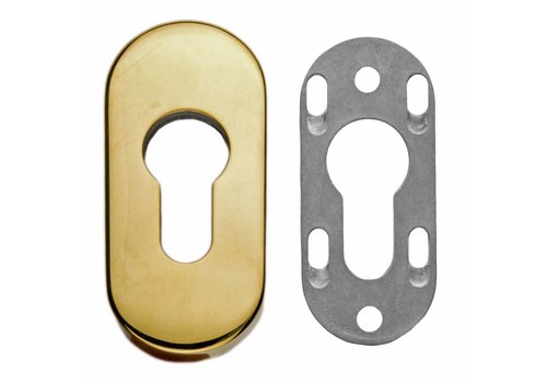 SAFETY CYLINDER PLATE OVAL TITANIUM 6MM