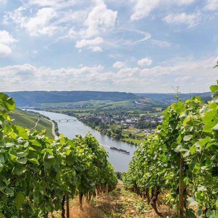 Duitse wijn