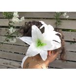 White Aloha Lily Hair Flower 2 x