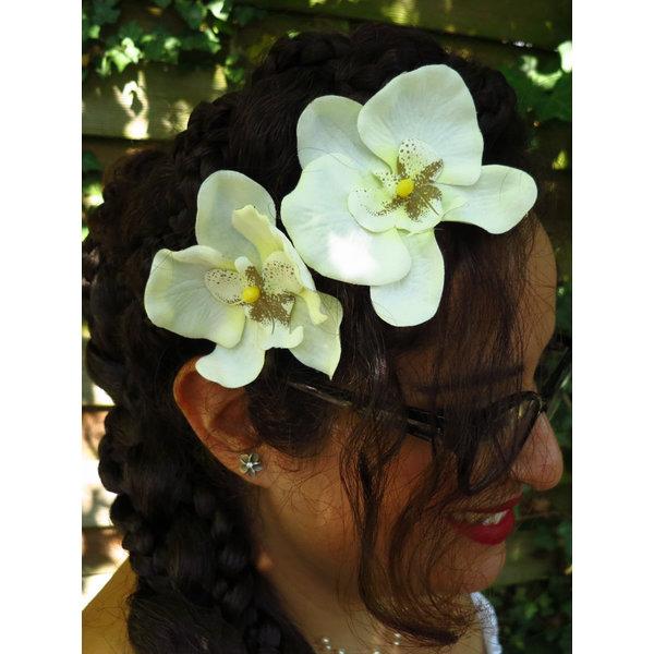 Orchideen 2 x elfenbeinfarben