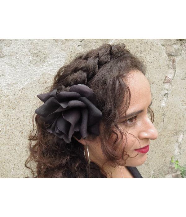 Haarblüte Samtrose schwarz