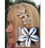 Kauri Haarblume, bronze oder gold