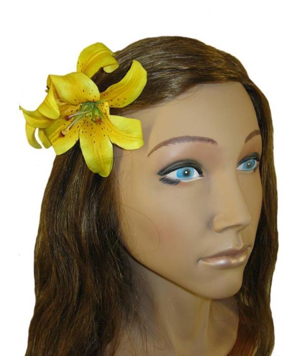 Haarblüte Lilie doppelt gelb 2 x
