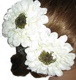 Flora Haarblume 2 x