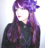 Haarblüte Lilie lila 2 x