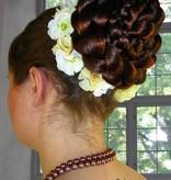 Fairy Larkspur hair flowers