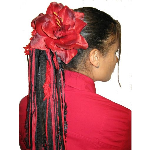 Flamenco Amaryllis 2 x