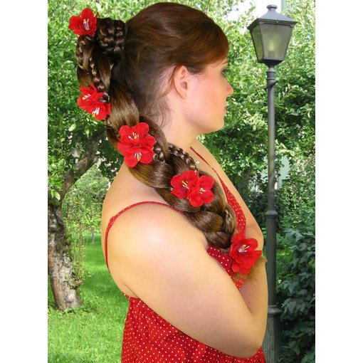 Rote Bollywood Blüten