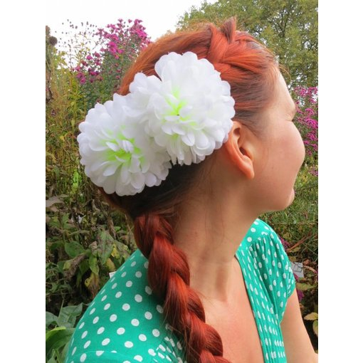 White Chrysanthemum 2 x