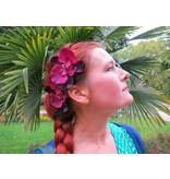Weinrote Orchideen Haarblüten 2 x