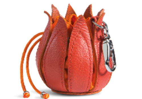Small Pouch in orange