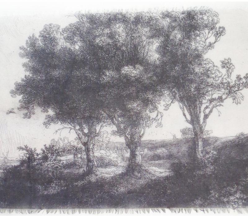 Shawl The Three Trees