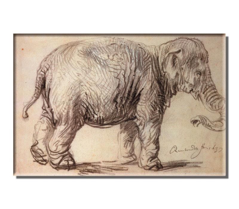 Magnet Elephant