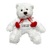 Valentijnscadeau knuffel met foto