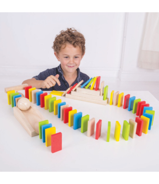 Houten Domino set (108dlg.)
