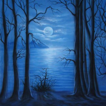 Walimex Pro Background Cloth 'Moonlight', 3x6m