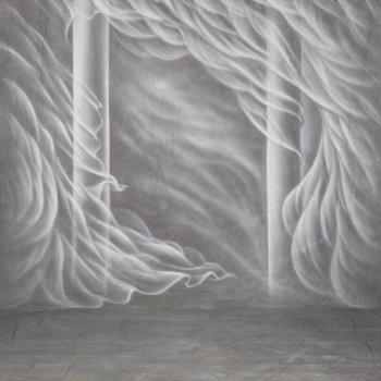 Walimex Pro Motiv-Stoffhintergrund Fotografie 'Silk', 3x6m
