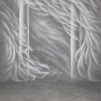 walimex pro Motiefdoek Achtergrond 'Silk', 3x6m