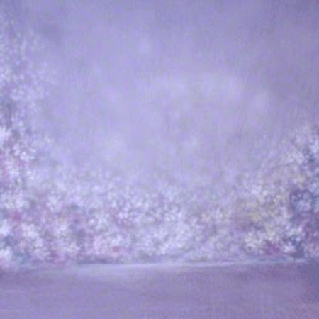 Walimex Pro Motiefdoek Achtergrond 'Helder', 3x6m