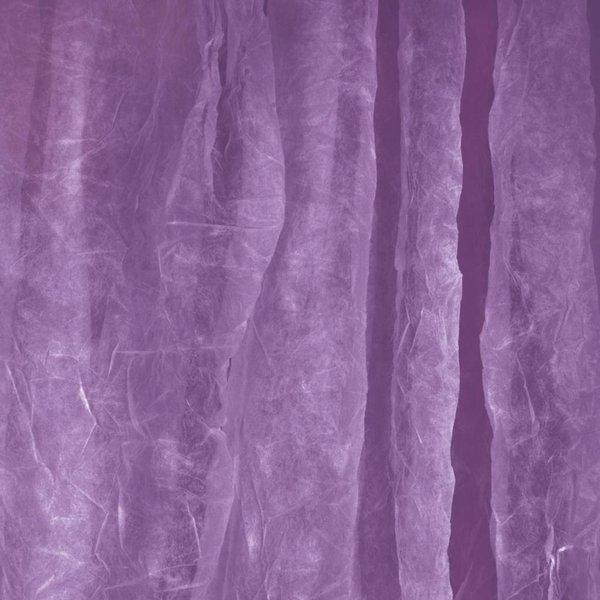 Walimex Achtergrond Doek voor studio fotografie 3x6m Paars