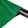 Walimex Achtergrond Doek Fotografie 2,85x6m, Groen