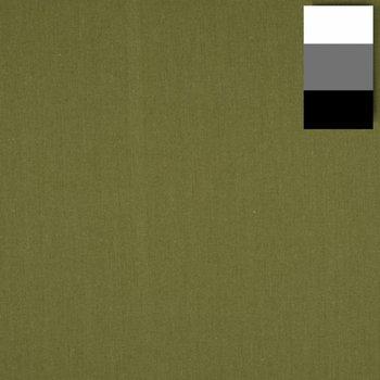 Walimex Stoffhintergrund Fotografie 2,85x6m, kaktus