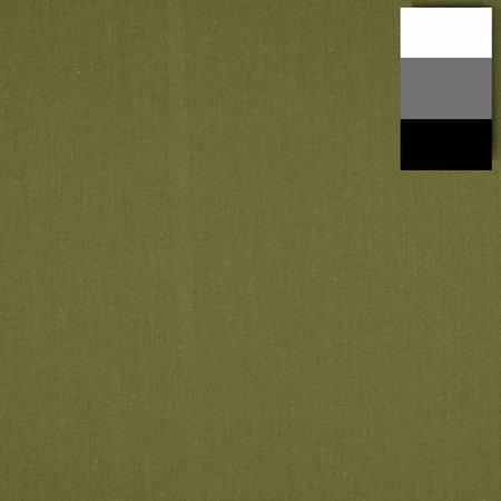walimex Stoffhintergrund 2,85x6m, kaktus