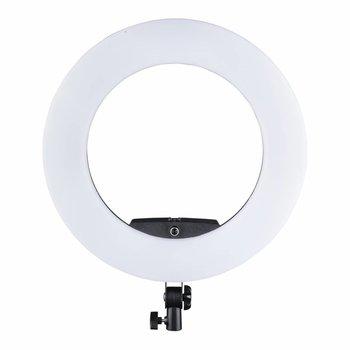 Walimex Pro LED Ringverlichting Medow 960 Pro Bi Color
