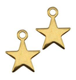 DQ-bedel ster goud (2x)