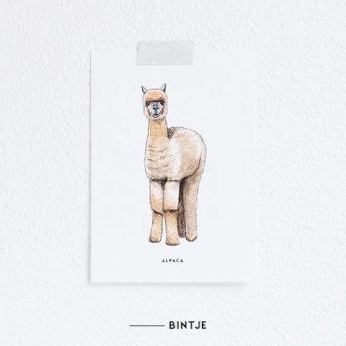 Meesie & Bintje Kaart alpaca
