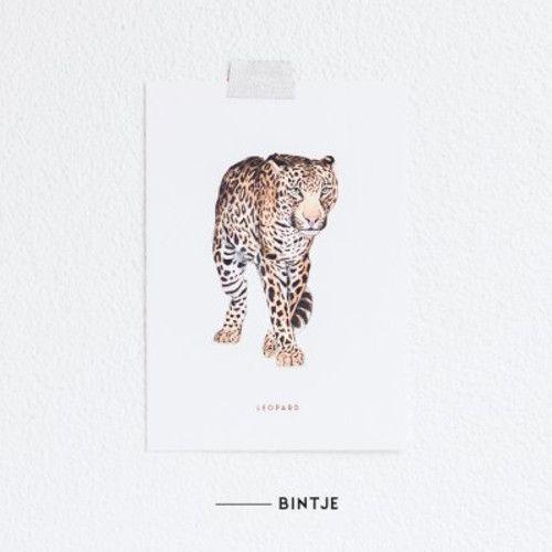 Meesie & Bintje Kaart luipaard