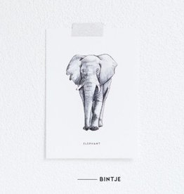 Meesie & Bintje Kaart olifant