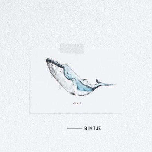 Meesie & Bintje Kaart walvis