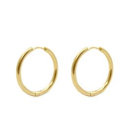 Oorringen roestvrijstaal goud 20 mm (p.p)