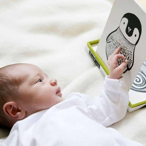 Wee Gallery Art-Cards for baby black & white zeedieren