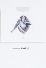 Meesie & Bintje Kaart aap