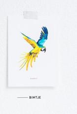 Meesie & Bintje Kaart papegaai