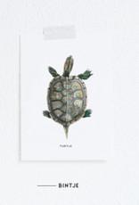 Meesie & Bintje Kaart schildpad