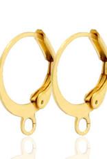 RVS creolen met oog goud (p.p)