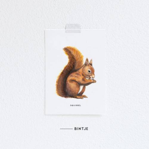 Meesie & Bintje Kaart eekhoorn
