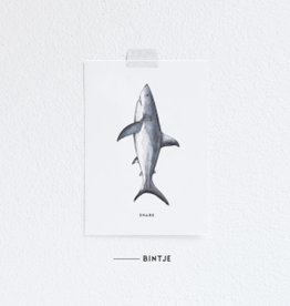 Meesie & Bintje Kaart haai
