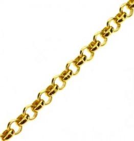 Jasseron goudkleurig (p / 10 cm)
