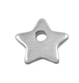 Bedel roestvrij staal rvs ster antiek zilver 6 mm (2x)
