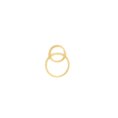 Bedel rvs goud rings (1x)