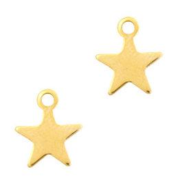 Bedel rvs goud ster (1x)